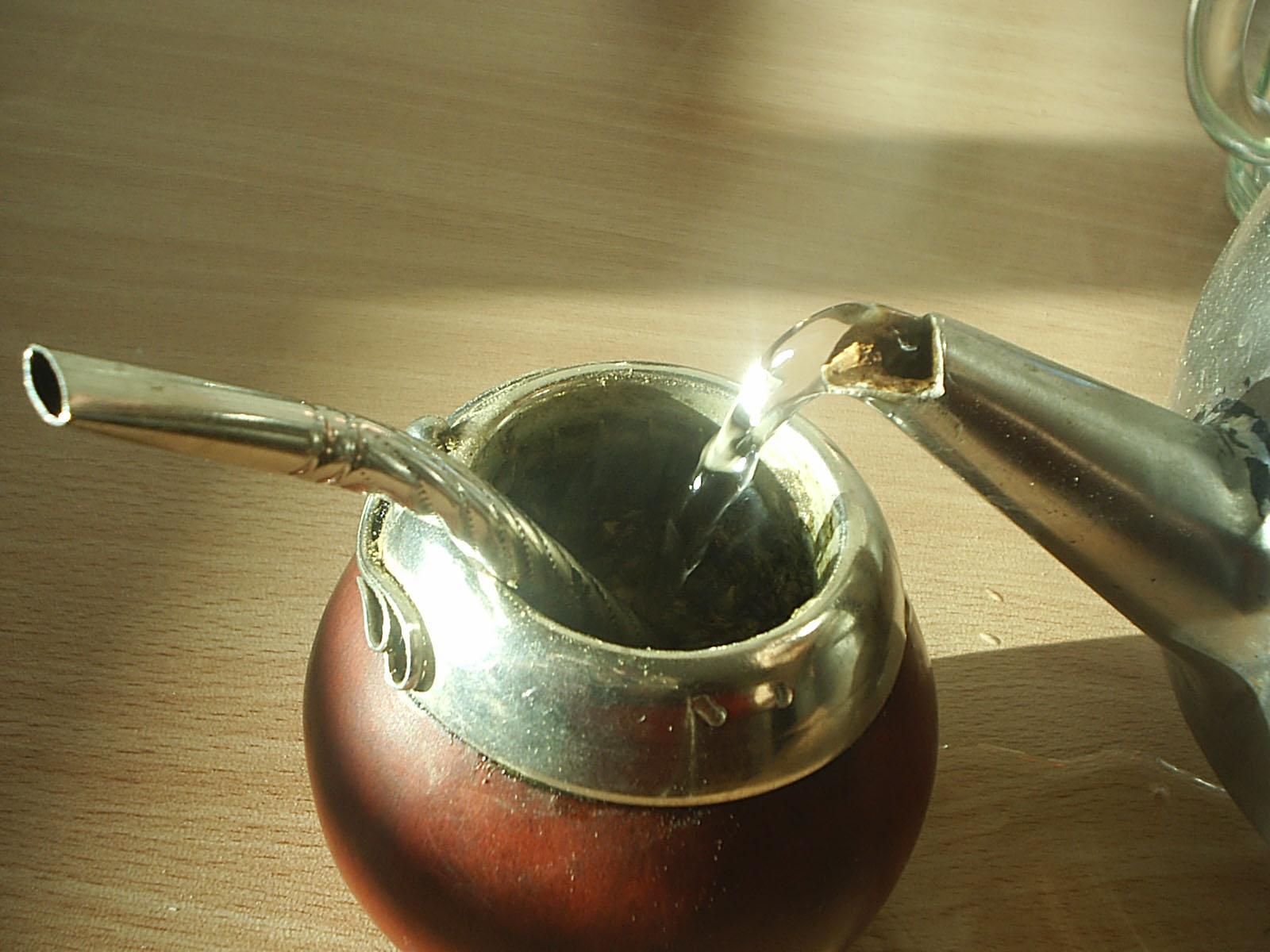 В сырье парагвайского вечнозеленого падуба, применяемого при приготовлении матэ, есть огромное число кислот