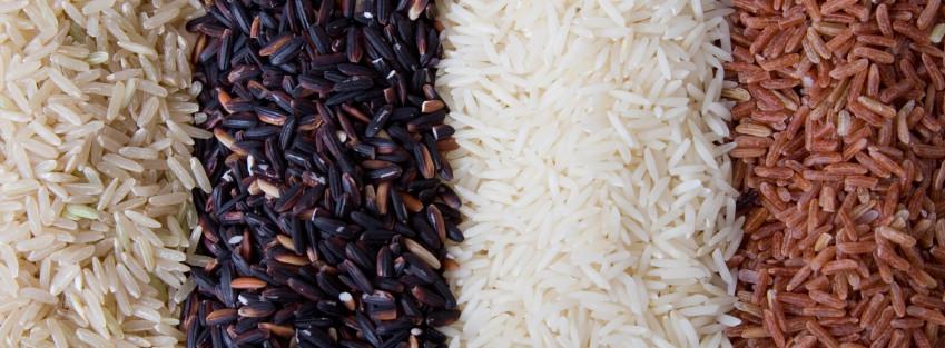 Rýže mnoha barev. Bílá, červená i černá.