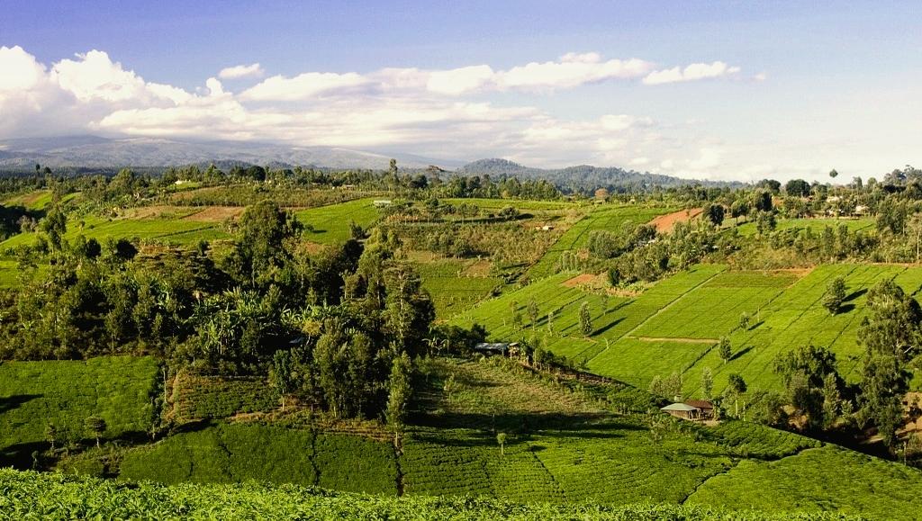 Keňa- výlet do vnitrozemí