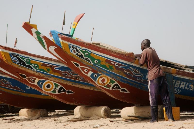 Gambijci se živí především rybolovem, ale pěstují i rýži, čirok a proso.