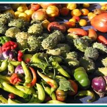 exotická zelenina v kuchyni